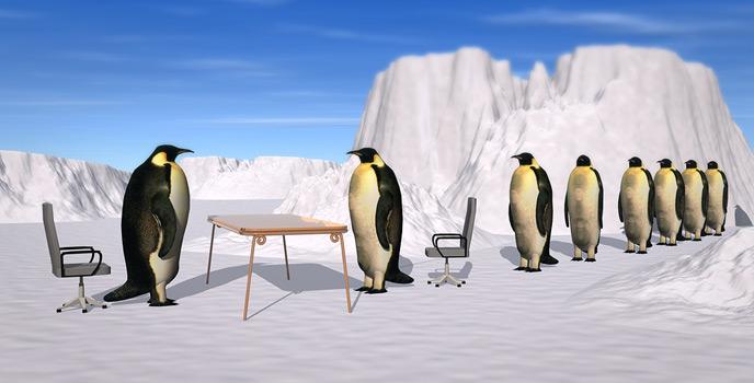 entretien-recrutement-pinguin-cover